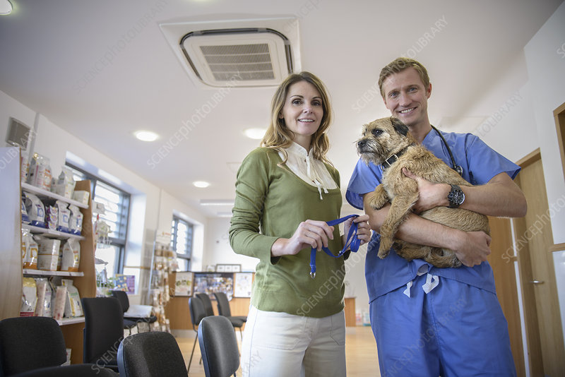 Veterinarian holding dog in lobby