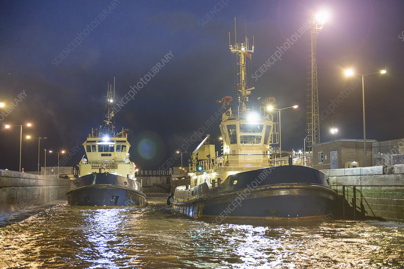 Tugboats docked in harbour at night