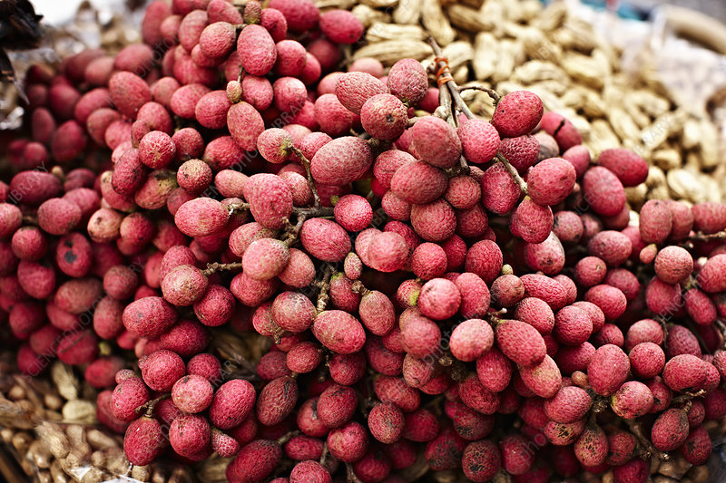 Close up of pile of lychee fruit