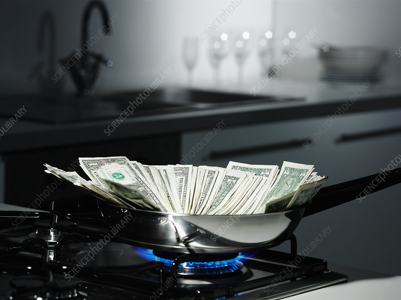 Dollar bills in frying pan on stove