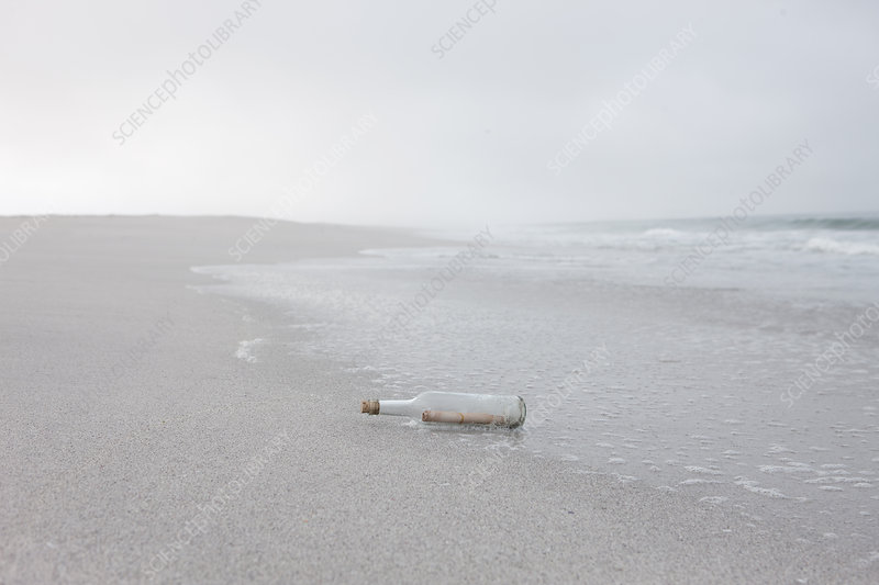 Message in bottle washed up on beach