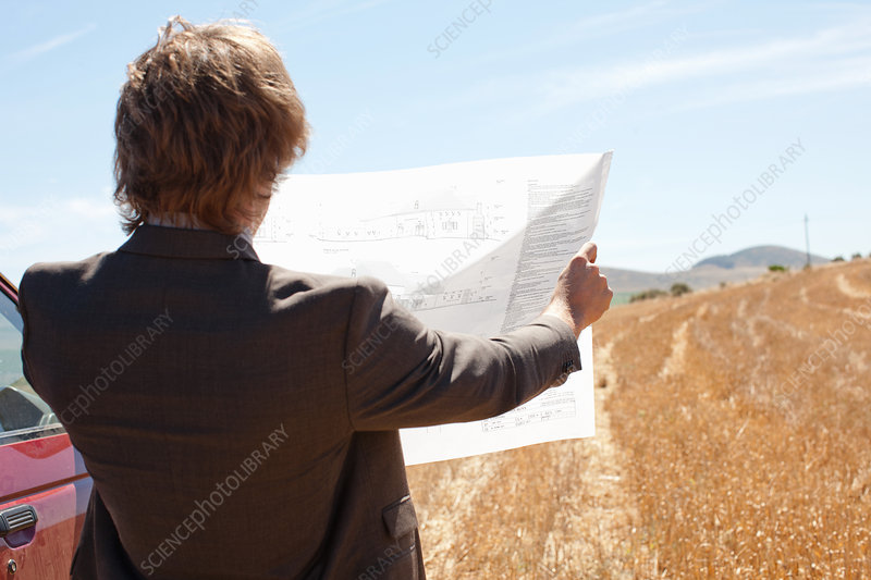 Businessman reading blueprints in field
