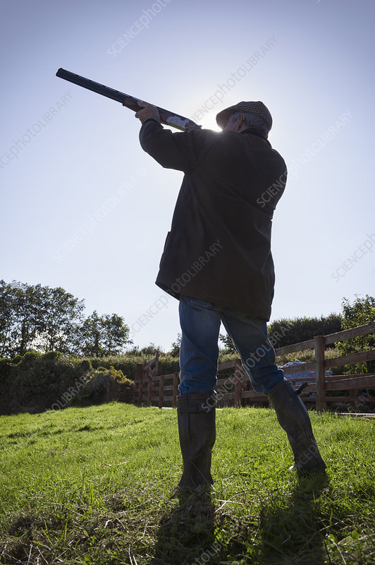 Hunter aiming rifle in field