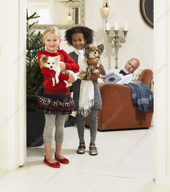 Girls holding dogs by Christmas tree