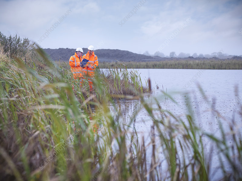 Ecologists examining reeds and lake
