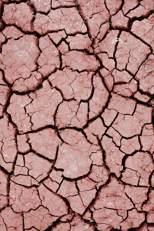 Close up of cracked dry earth
