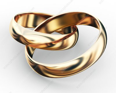 Entwined wedding rings, artwork