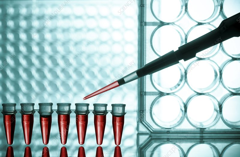 Pipetting into microtubes