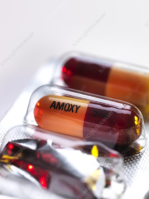 Amoxicillin antibiotic drug capsules