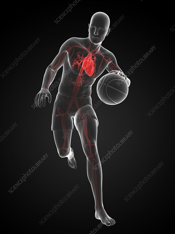 Basketball player, artwork