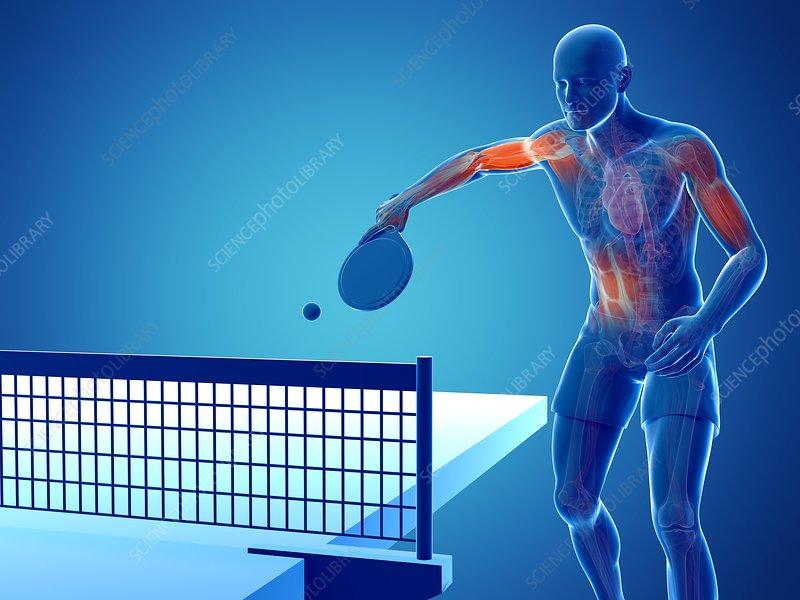 Table tennis player, artwork