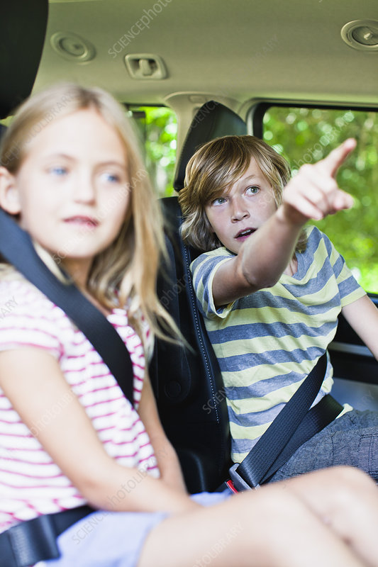 Children sitting in backseat of car