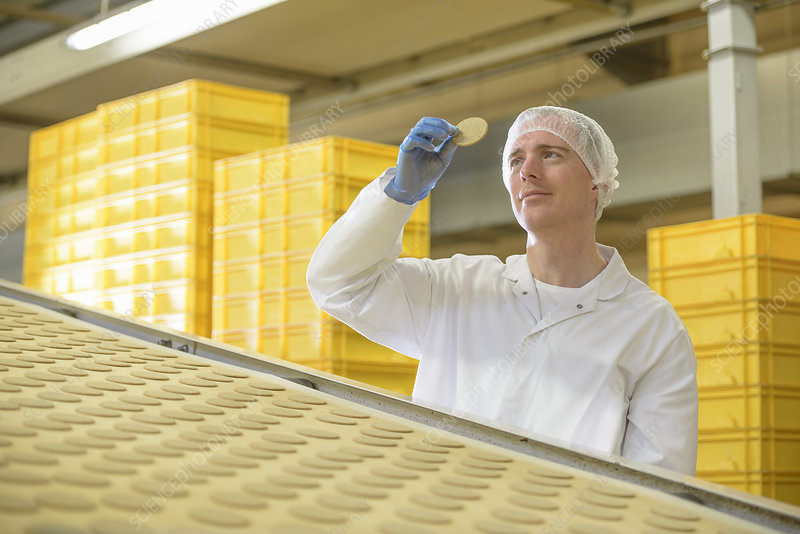 Worker examining biscuit in factory