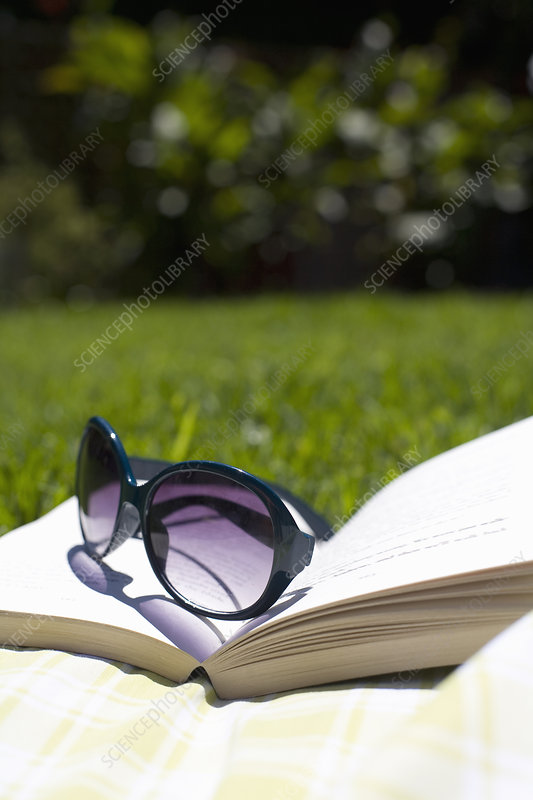 Sunglasses on book in grassy field