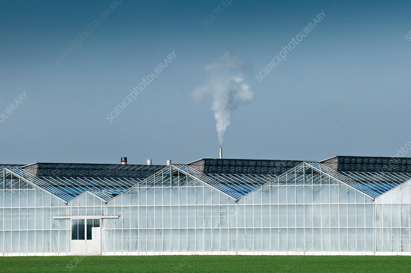 Smoke from large industrial greenhouse