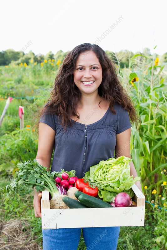 Woman with fresh vegetables in allotment