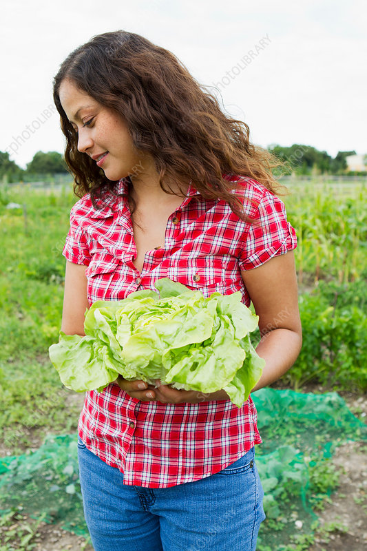 Young woman holding cabbage in allotment