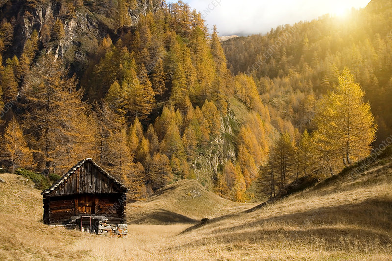 Remote shack in Piedmont, Italy
