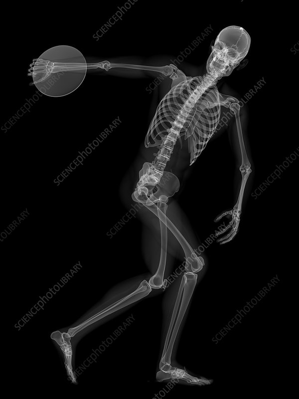 Skeleton throwing discus, artwork