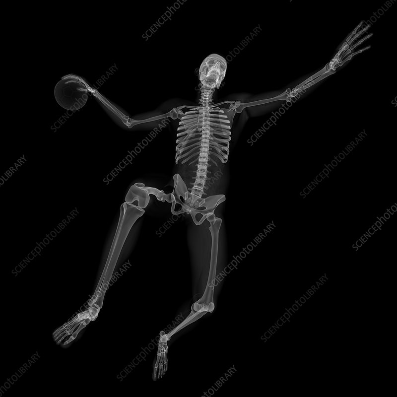 Skeleton playing handball, artwork