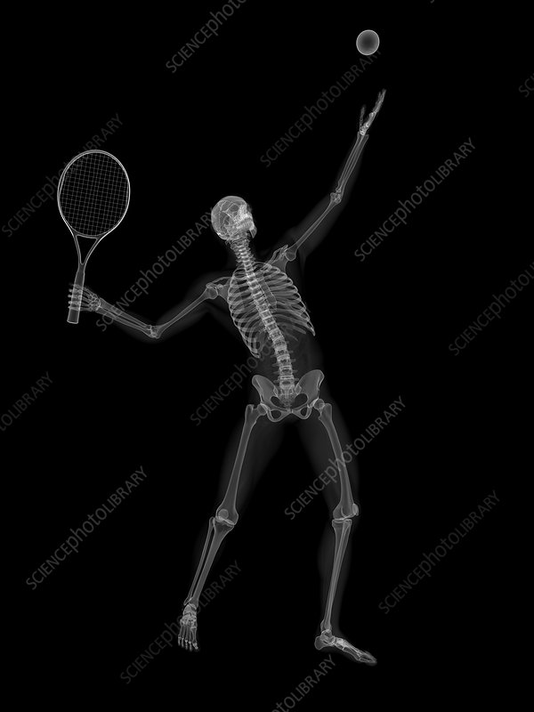 Skeleton playing tennis, artwork