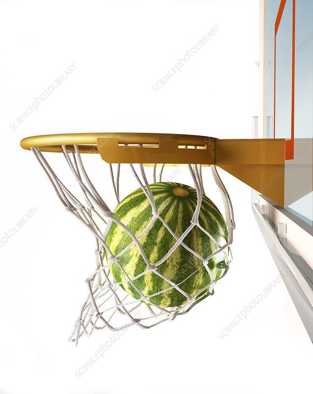 Watermelon basketball, artwork - Stock Image F008/3213
