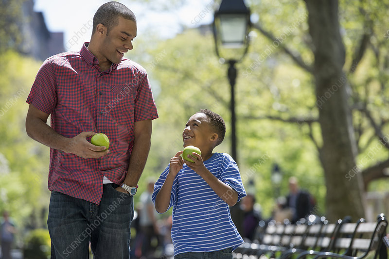 Man and boy eating apples in the park