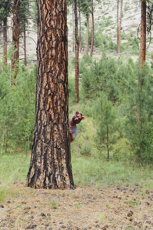 Man in bear mask in woodland