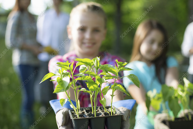 Girl with seedling plants on farm