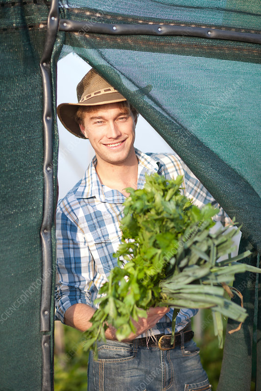 Young man with vegetables grown on farm