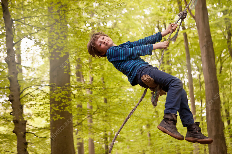 Boy swinging on rope in forest