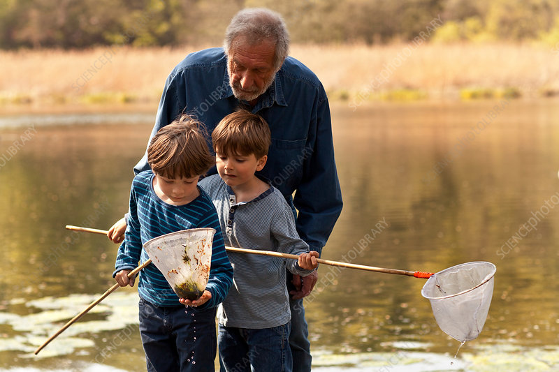 Grandfather and grandsons fishing