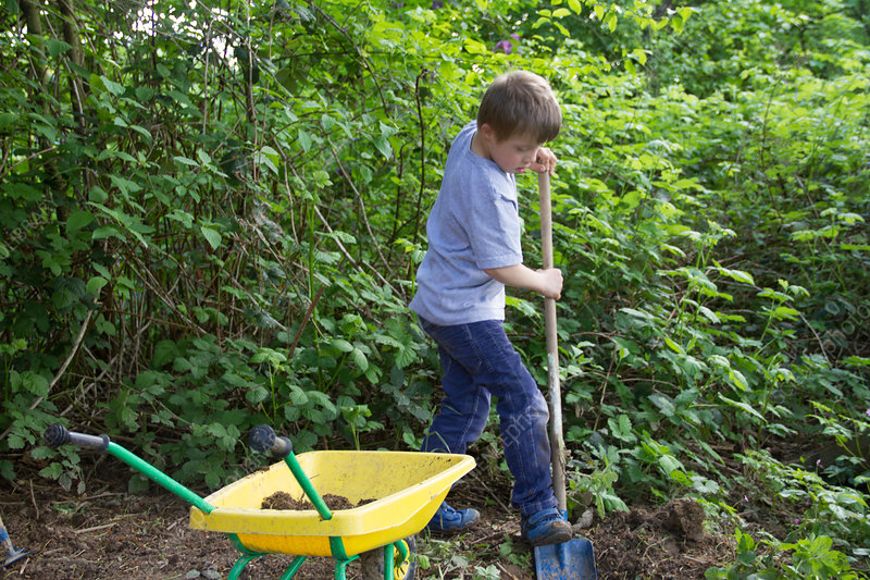 Digging Toys For Boys : Boy digging in garden with toy spade stock image f