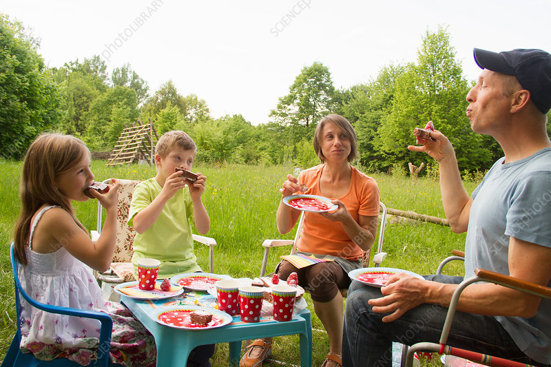 Family enjoying birthday cake picnic