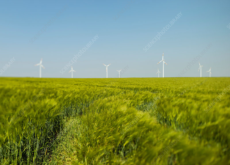 Green field and wind turbines, Germany