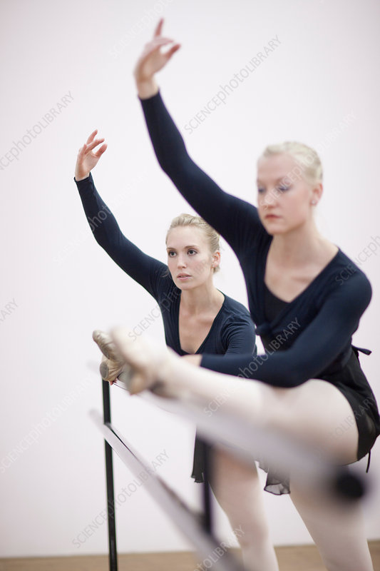 Female ballerinas stretching at the barre