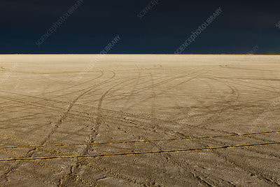 Tire tracks, Bonneville Salt Flats