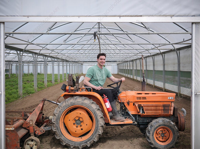 Farm worker on tractor in polytunnel