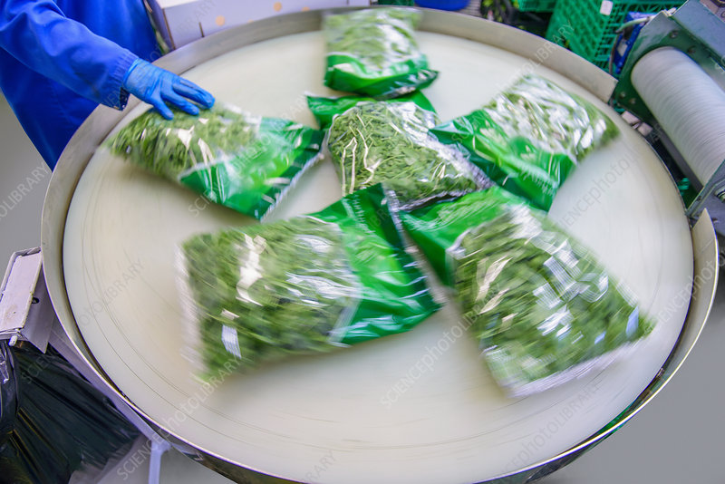 Packets of salad on production line