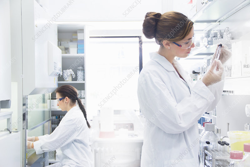 Biology students working in lab