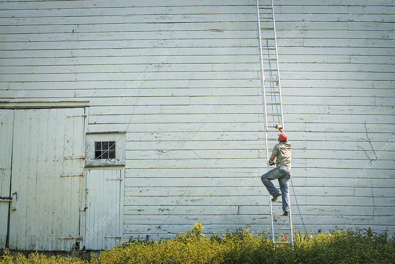 A man climbing a ladder