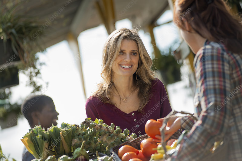 Organic Farm Stand with shoppers