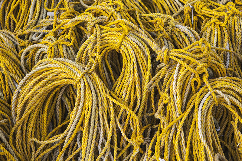 Rows of stacked yellow rope