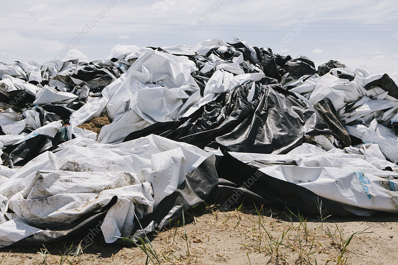 Black and white discarded plastic bags