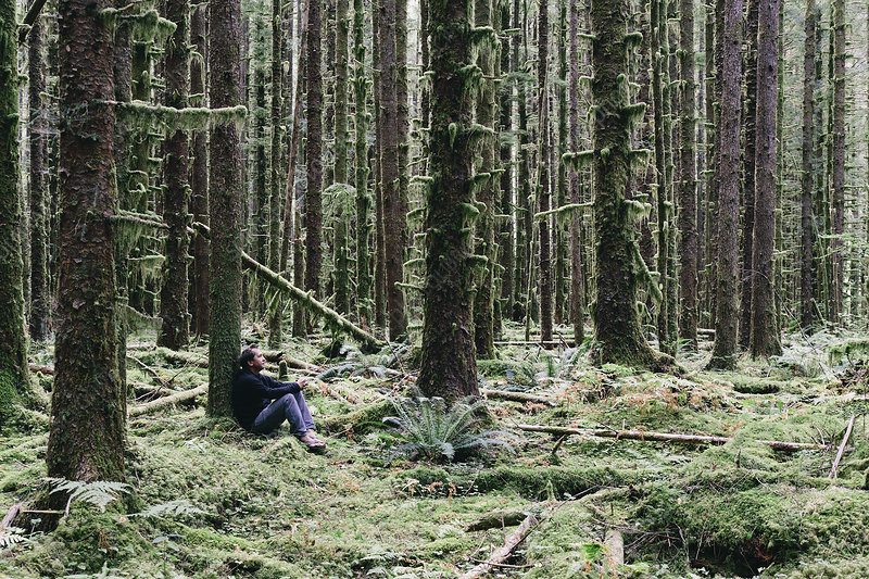 Man sitting among moss-covered trees