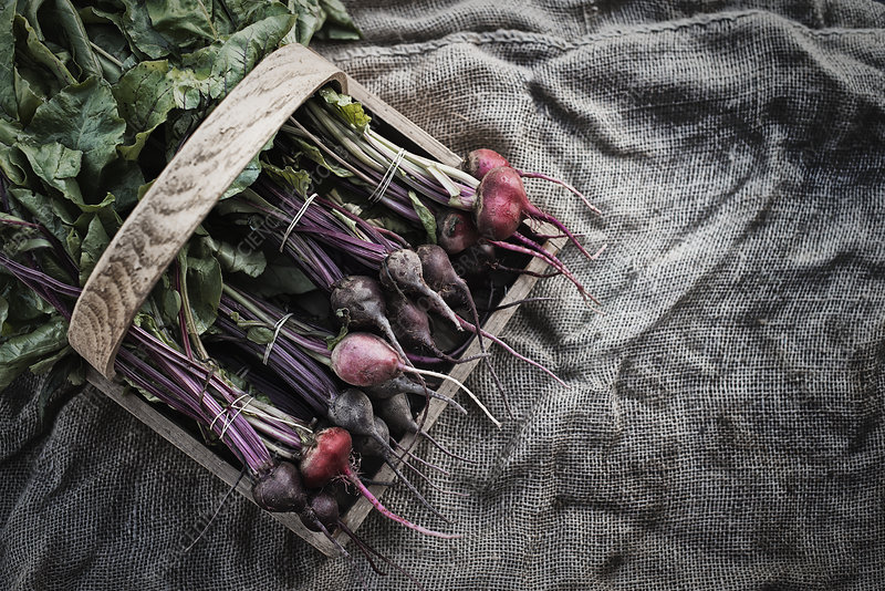 Organic Assorted Beets with stems