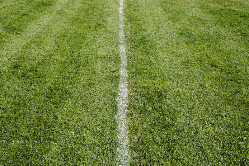 White centre line on freshly cut grass