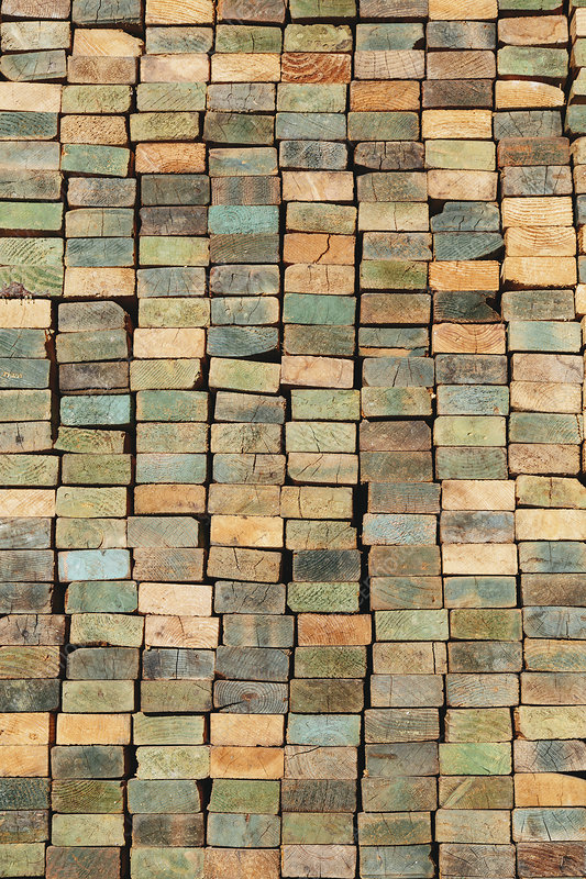 Multi-colored wood studs planks