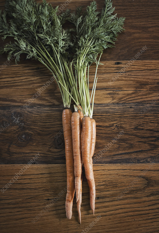 A small bunch of carrots on a table top.