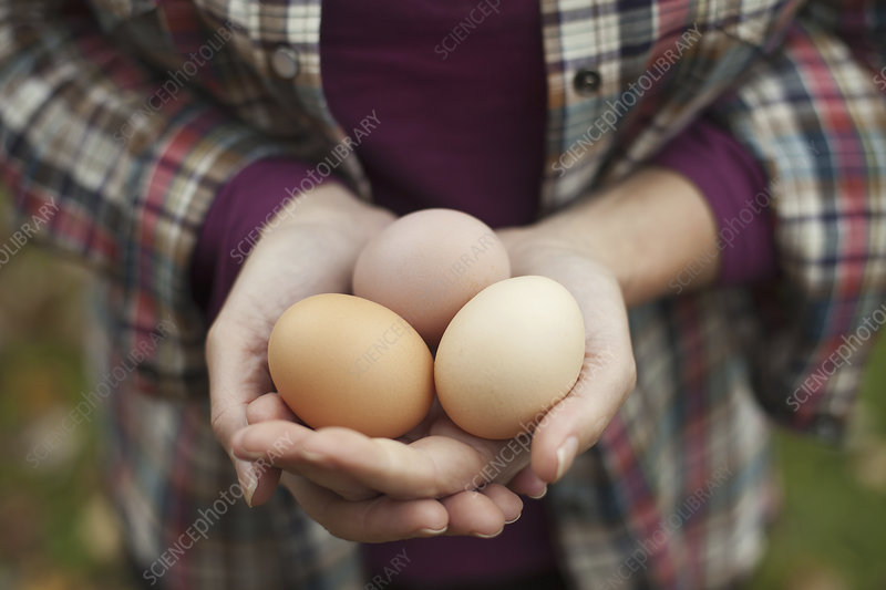 Woman with a clutch of fresh hen's eggs